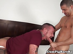 Mature wolf deepthroating twinks fat cock