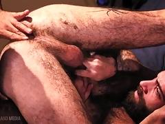 Huge Cock muscle bears hardcore breeding