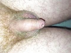 Small uncut Penis